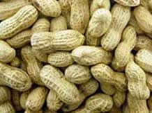 Vietnam removes temporary suspension on groundnut import from India