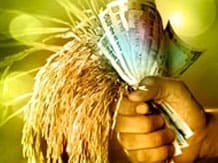 Image result for Agricultural Loan