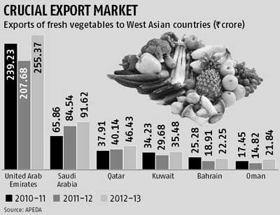 How to start vegetable export business in india
