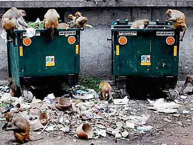 NGT asks Delhi govt, civic bodies to raise garbage dumping issue before HC