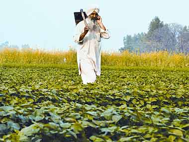 Punjab's growth in agricultural sector