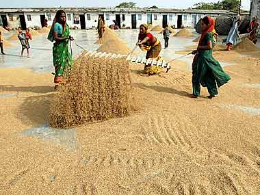 Grain procurement: Centre to raise FCI funding