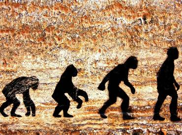 Human body went through four stages of evolution: Study