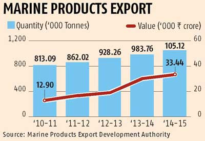 Seafood exports in doldrums, likely to fall 10% in FY-16