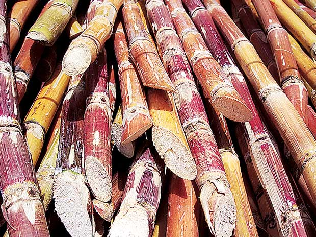 Meet to discuss poor supply of ethanol