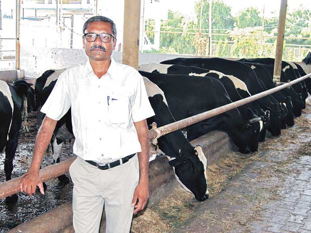 how to start a dairy farm business in up