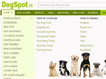 Ratan Tata invests in pet care portal DogSpot.in