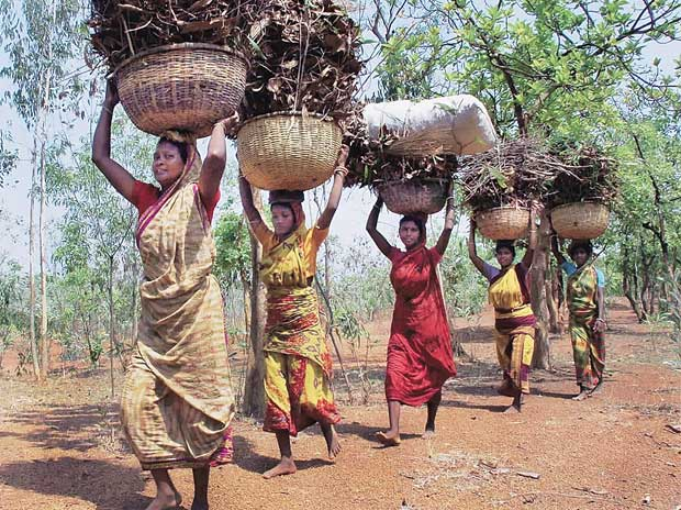 Chhattisgarh govt cancels tribal rights over forests to facilitiate coal mining