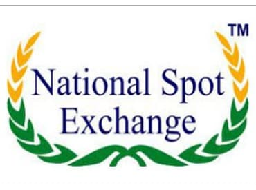 ED-arrests-Agarwal-of-ARK-Imports-in-NSEL-case