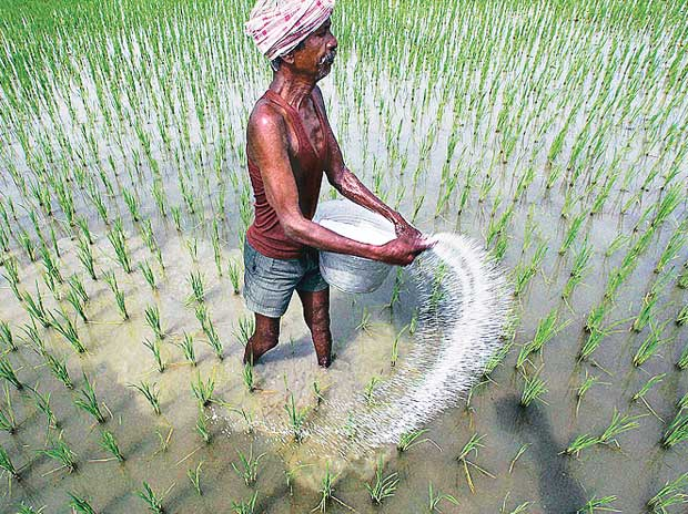 Neem-coated truth: Urea policy isn't a game-changer