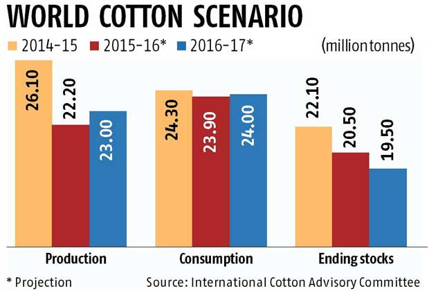 Cotton global stocks shrinking: ICAC