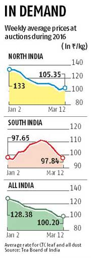 Tea producers see higher auction prices