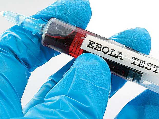 New Ebola virus may cause disease in humans