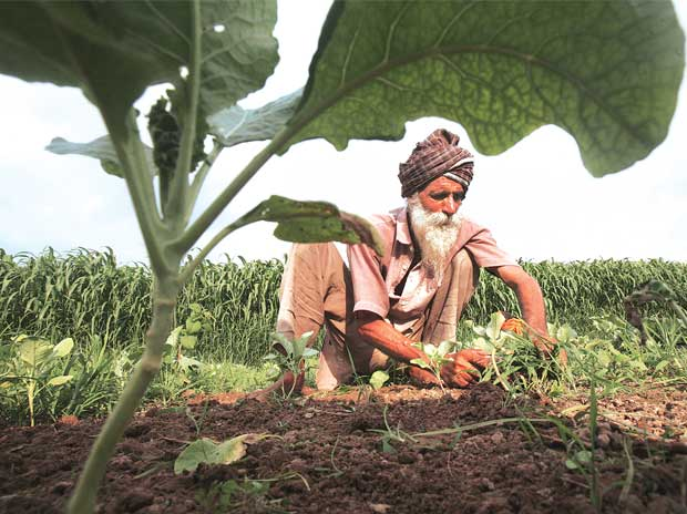 Punjab, known as the country's grain bowl with over 80 per cent of its land under irrigation, recorded the second highest farmers suicides in 2015, after Maharashtra