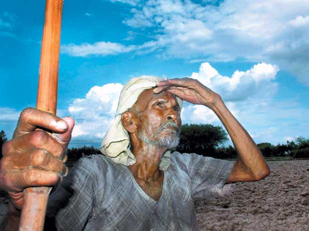 Assocham: Drought has trickle-down effect on economy
