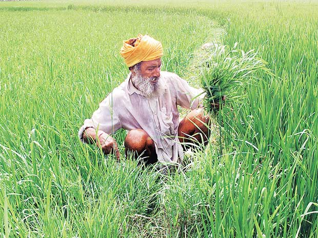Punjab may get Centre's support for agri dues