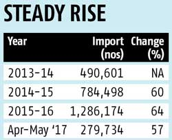 Radial tyre imports surge