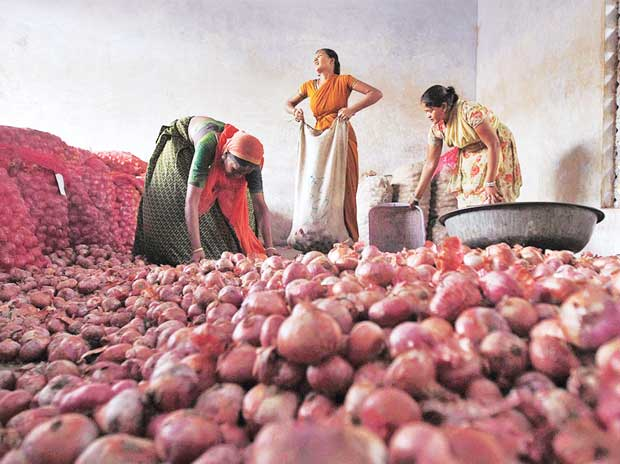 Onion acreage may shrink owing to weak prices