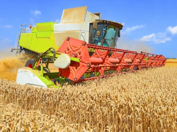 Warm weather worries wheat farmers | Business Standard News