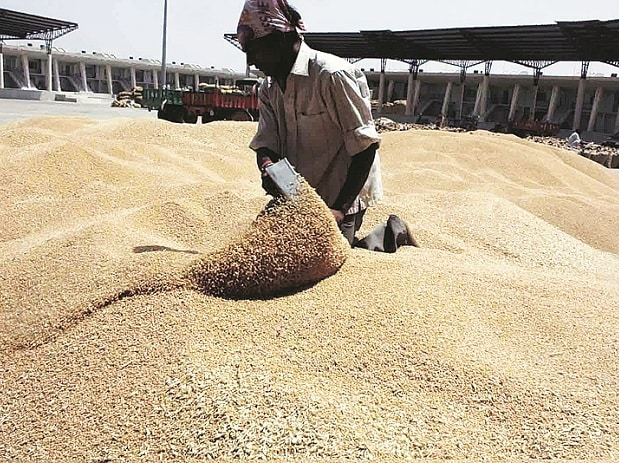Govt hikes wheat MSP by Rs 110/qtl; pulses, Rs 200/qtl to check prices