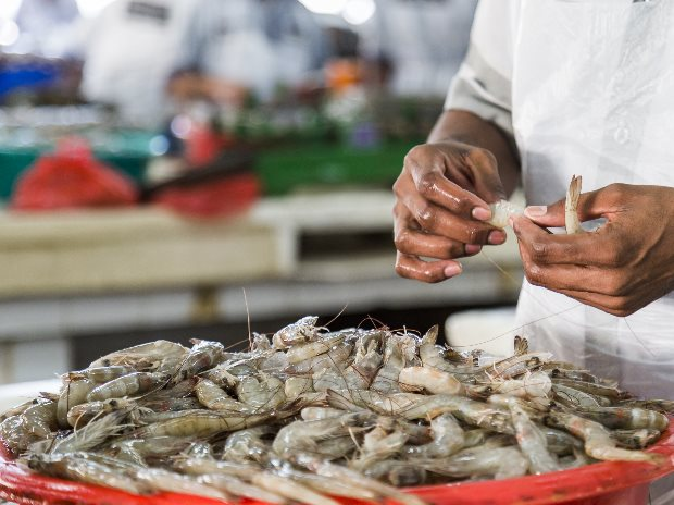 World shrimp trade steady on surge in Indian exports