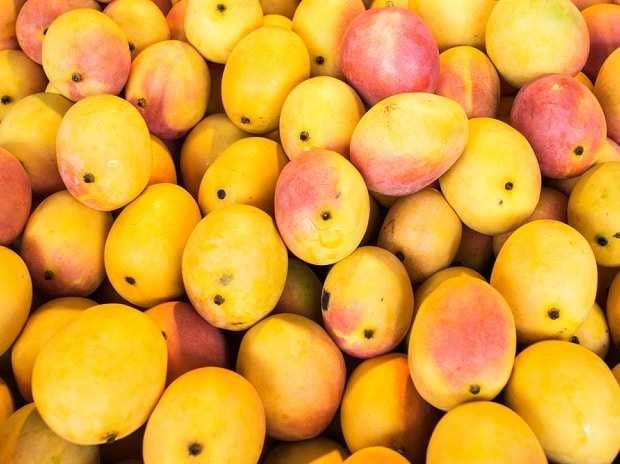 Australia, US new markets for Karnataka mangoes