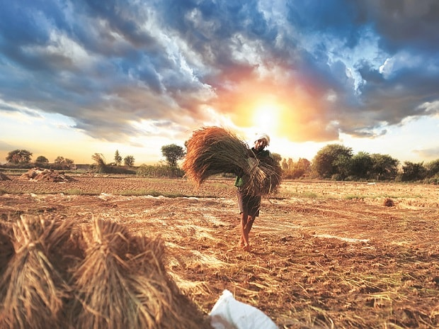 Bank shares fall on farm loan waiver in Maharashtra