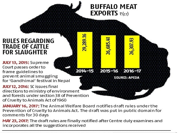 Centre to amend cattle slaughter rule