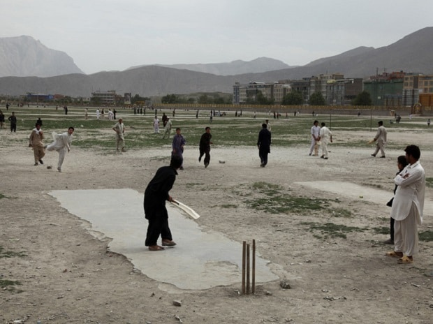 Cricket (Photo: Flickr)