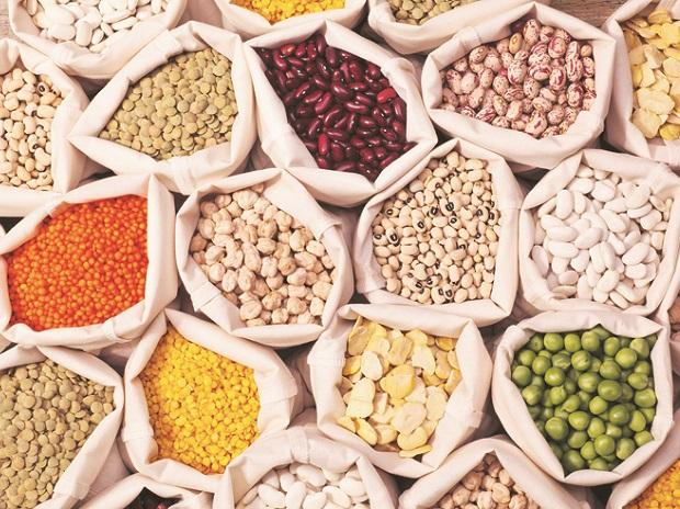 pulses, dal, moong, tur