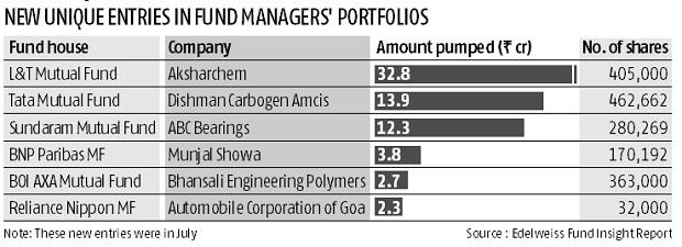 Small-caps that have caught fund managers' fancy