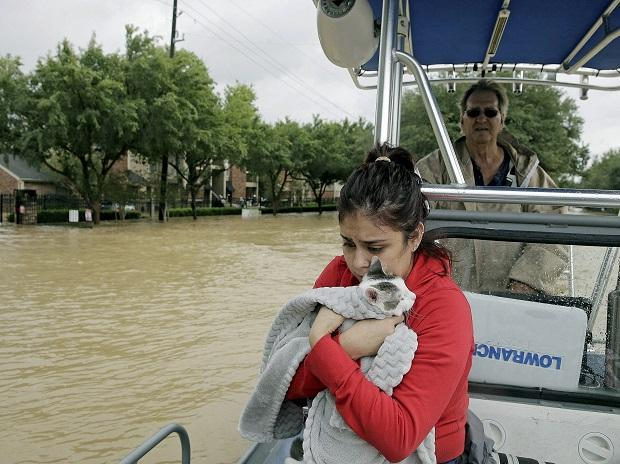 Jannett Martinez holds her cat Gigi as she rides a boar out of her neighborhood which was inundated after water was released from nearby Addicks Reservoir when it reached capacity due to Tropical Storm Harvey. Photo: AP/PTI
