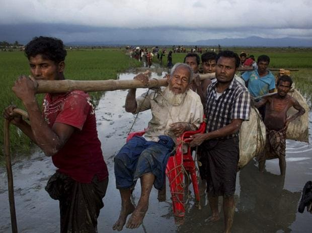 Ethnic Rohingya carry an elderly man and walk through rice fields after crossing over to the Bangladesh side of the border near Cox's Bazar's Teknaf area. Photo: AP | PTI