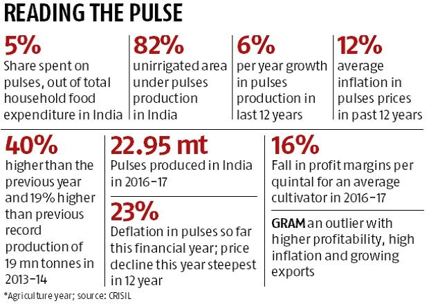 Pulses farmers income fell 16% in 2016-17: Crisil study