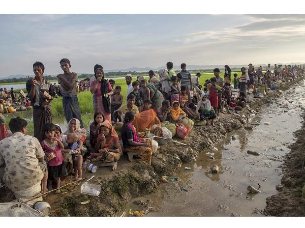 Palong Khali : Newly arrived Rohingya Muslims, who crossed over from Myanmar into Bangladesh. Photo: PTI