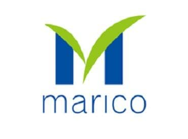 Marico logo. (Photo: Marico website)