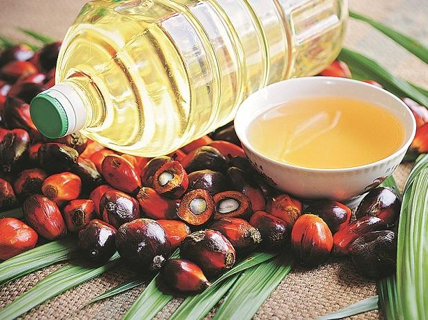 Edible oil refinery capacity rises on import duty hike
