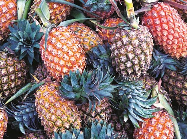 What's the economic cost of Brexit? Pineapples tell a tale