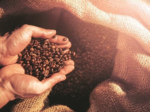 British startup turns waste coffee grounds into biofuel for London buses