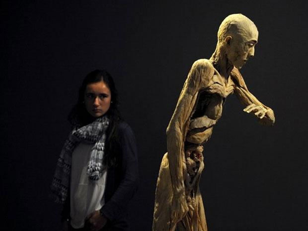 Walking round the show, one is encouraged to explore different ways of understanding and visualising the human body