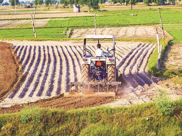 Minimum Support Price, MSP, kharif crop prices, rabi season