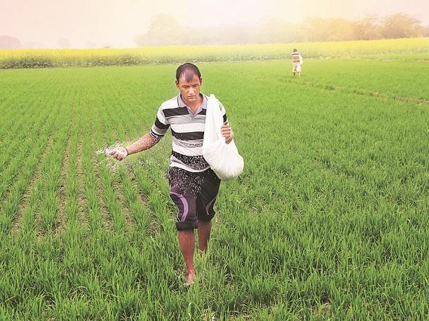 Fertiliser self-sufficiency a distant goal