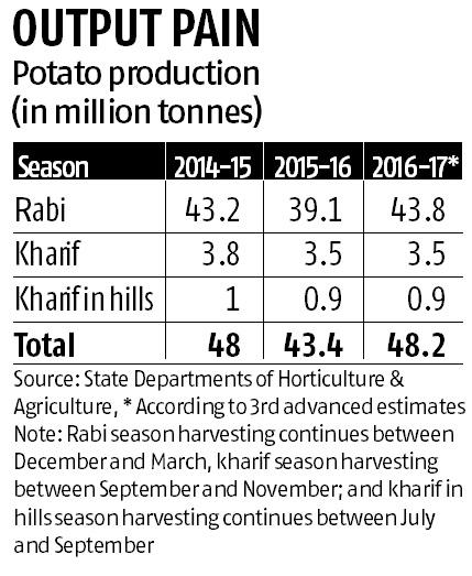 Dumping of potato in Agra and other parts of UP as prices slump