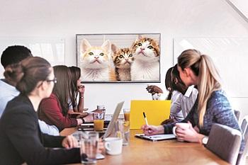 Impact of technology on productivity depends on company culture