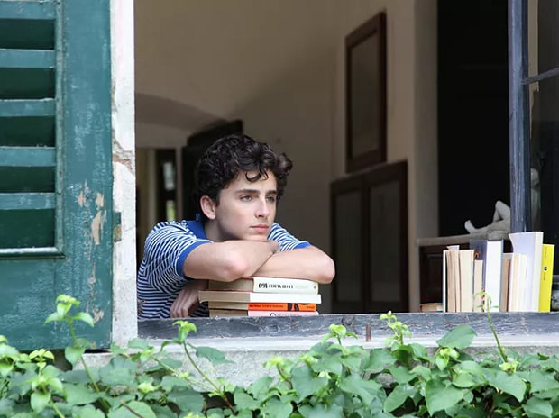 Timothée Chalamet as Elio in Call Me By Your Name (2017)