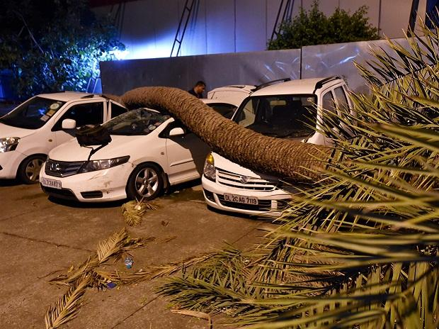 A palm tree trunk fell on cars during dust storm in New Delhi, on Sunday.