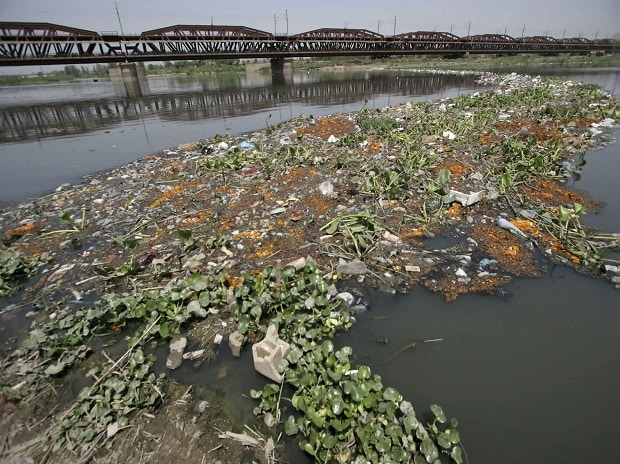 A view of the River Yamuna. File photo