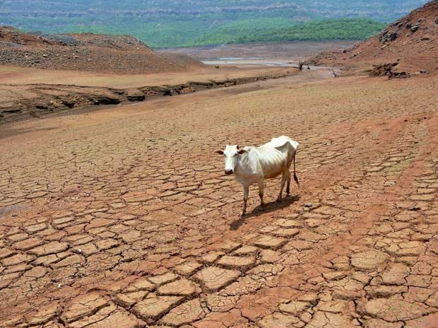 Over 1.1 mn farmers affected by drought in Chhattisgarh during kharif 2017
