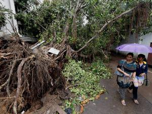Girls walk past an uprooted tree a day after cyclone Vardah
