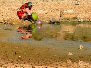 An elderly woman collecting water from a lake in drought-hit Dambadahalli near Chikmagalur in Karnataka